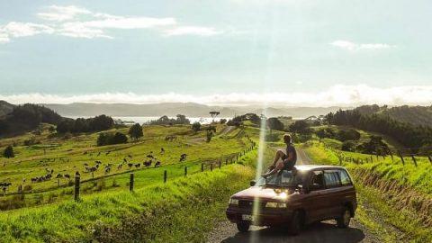 مجموعه عکس هایی که ثابت می کند طبیعت نیوزیلند بی نظیر است!