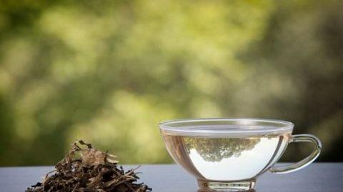 جوانی پوست با چای سفید!