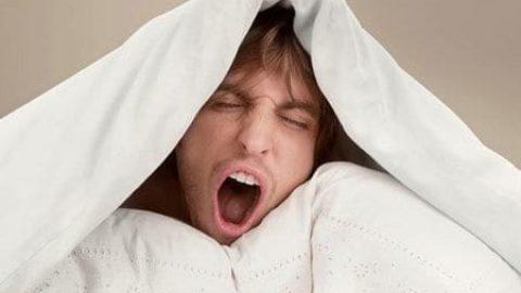 کمبود خواب باعث می شود تا مغز خودش را بخورد