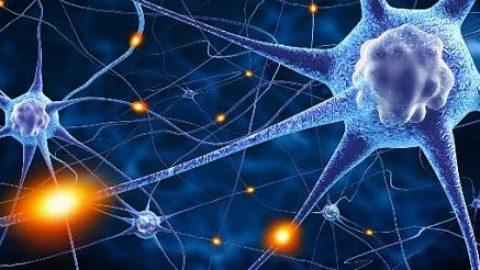 بهبود حافظه انسان با استفاده از تحریک الکتریکی مغز