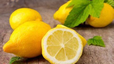 ۱۶ اثر درمانی از یک میوه سحر آمیز