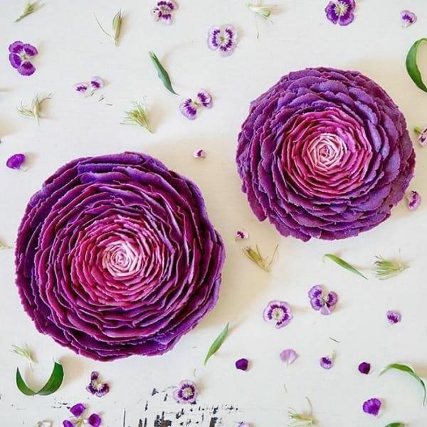 کیک های گیاهی (16)