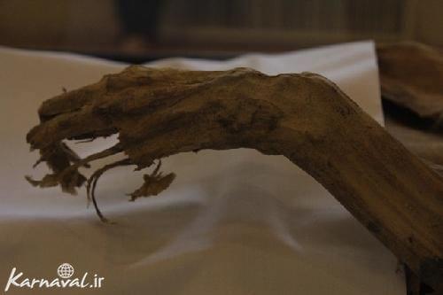 مومیایی زن 65 ساله یزدی (4)