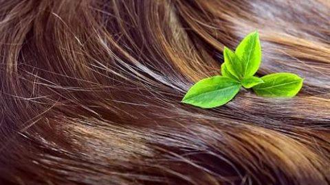 رشد سریعتر مو با یک ترفند ژاپنی