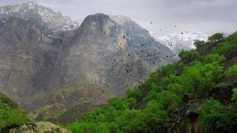 دره عشق؛ جلوه ای عاشقانه از طبیعت ایران