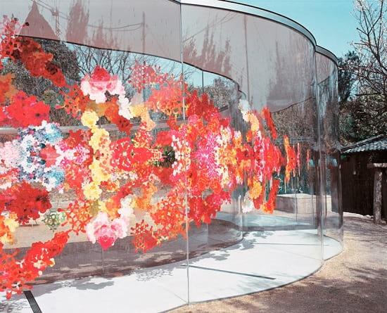 دیواری پز از گل (8)