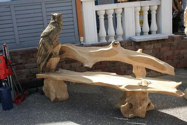 هنرنمایی با کنده درخت (7)