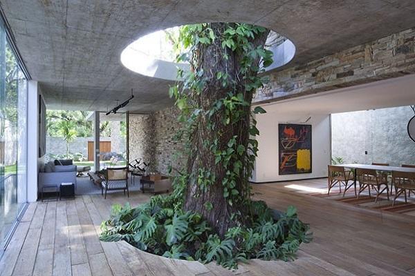 خلاقیت با درختان در معماری