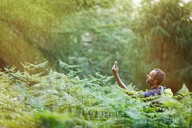 اگر در جنگل گم شدیم چکار کنیم | اگر در کوه گم شدیم چکار کنیم