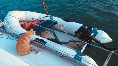 روزنوشته های کلانتر پفک؛ رویای سفر روی آب ها