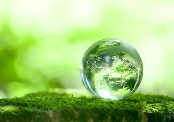 حفظ محیط زیست