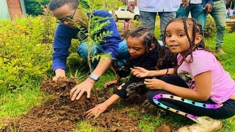 کاشت ۳۵۰ میلیون درخت در یک روز | کاشت درخت