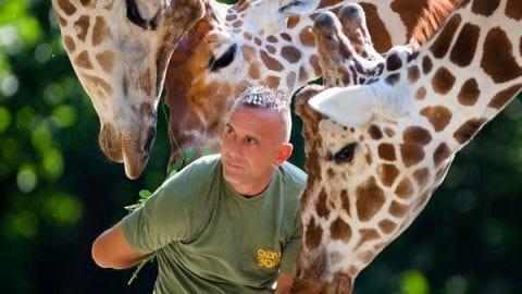 علاقه حیوانات به عکاس | شاخه عکاسی حیوانات