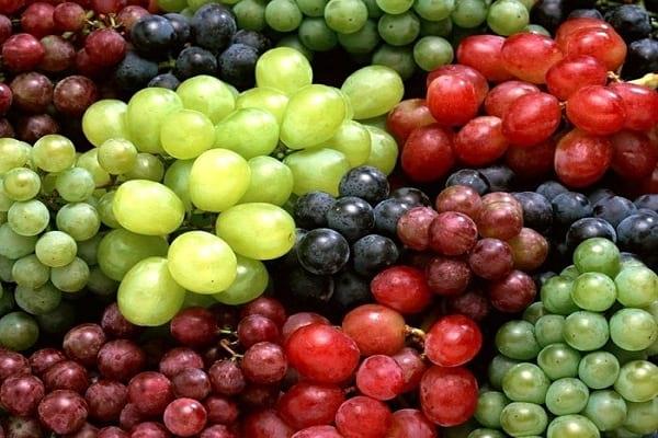 خواص انگور | انگور | انواع انگور