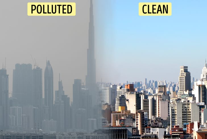 درختان مصنوعی که شهرها را نجات می دهند   فضای سبز   محیط زیست
