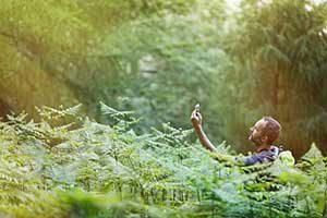 طبیعت-گردی