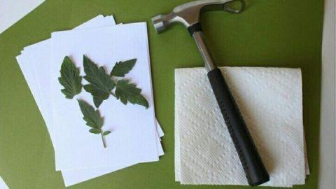 کاردستی تابلوهای بهاری بسازید!