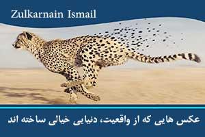 Zulkarnain Ismail