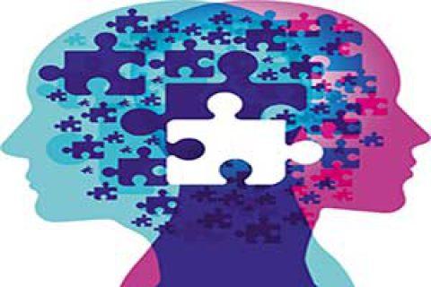 از مغز خود بیشتر بدانیم