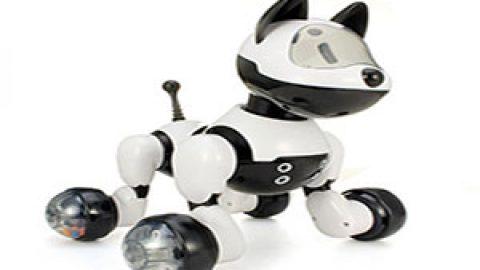 چه چیز روبات را حرکت می دهد؟