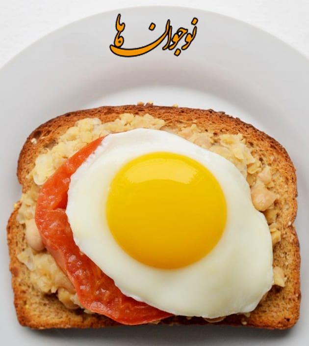 نمونه ای از صبحانه های سالم برای گردش