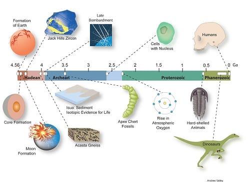 زندگی در زمین چگونه آغاز شد