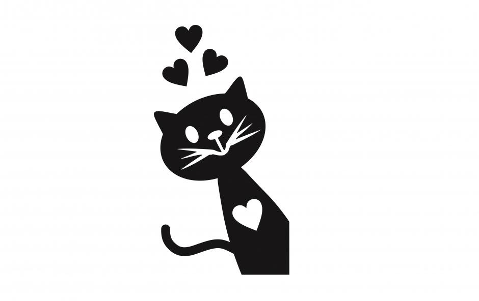 گربهی گور به قیر شده