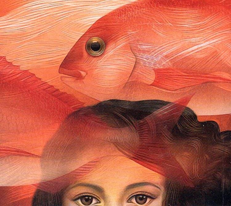 تصویر جلد کتاب موهای تو خانهی ماهیهاست